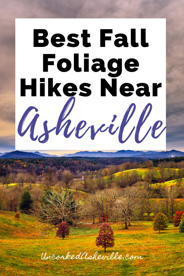Best Fall Hikes Near Asheville NC Pinterest Pin with fall foliage at Biltmore