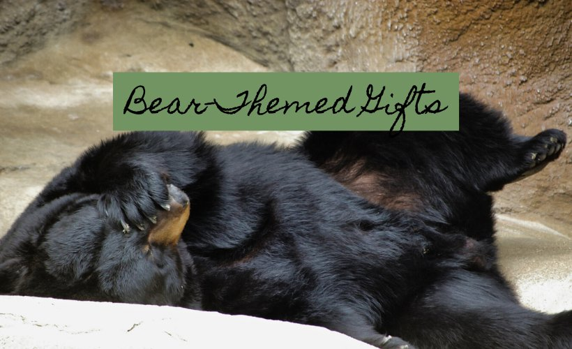 Best Gifts For Bear Lovers