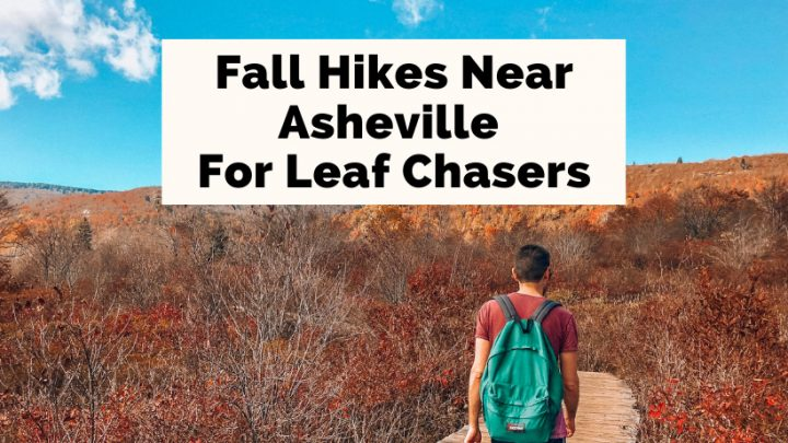 Best Fall Hikes Near Asheville, NC with brunette white male with green backpack hiking through fall foliage at Graveyard Loop