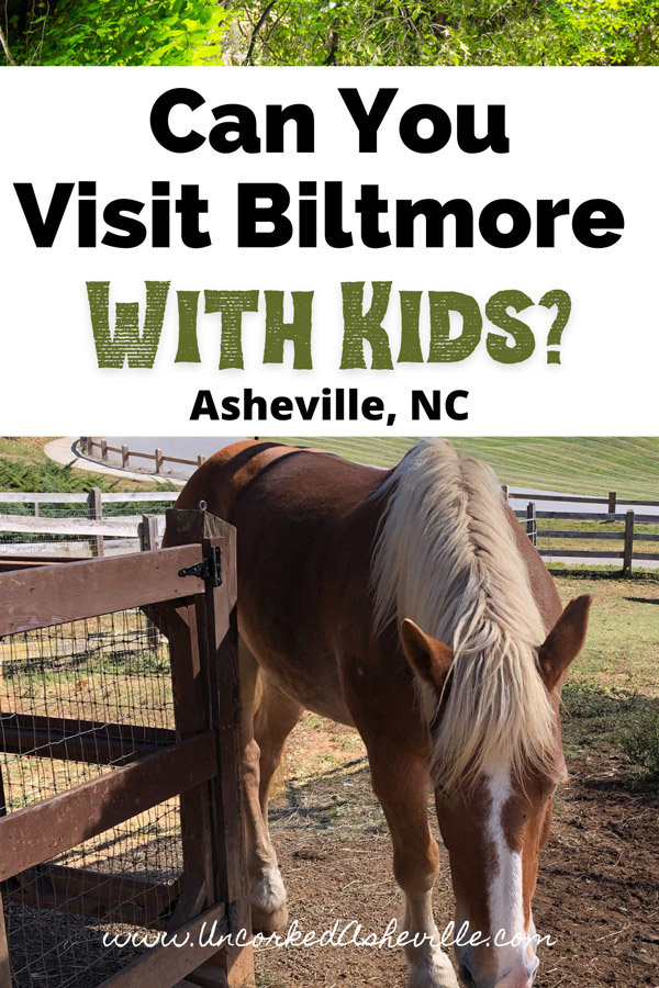 can you visit the Biltmore with kids Pinterest pin brown horse with sandy colored mane