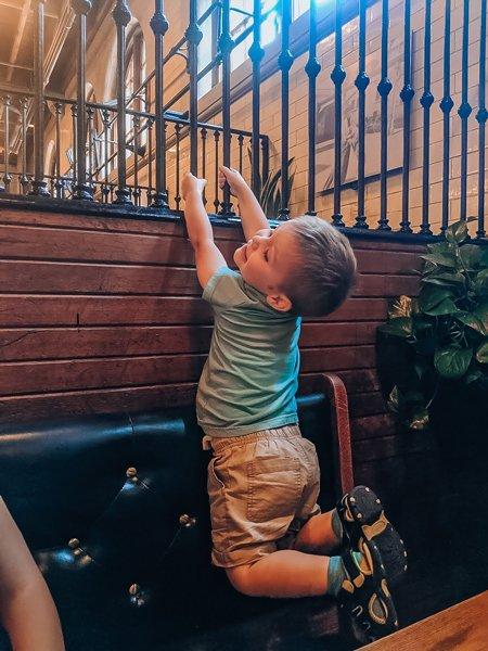Pisgah Playground And Slide For Kids at Biltmore Estate