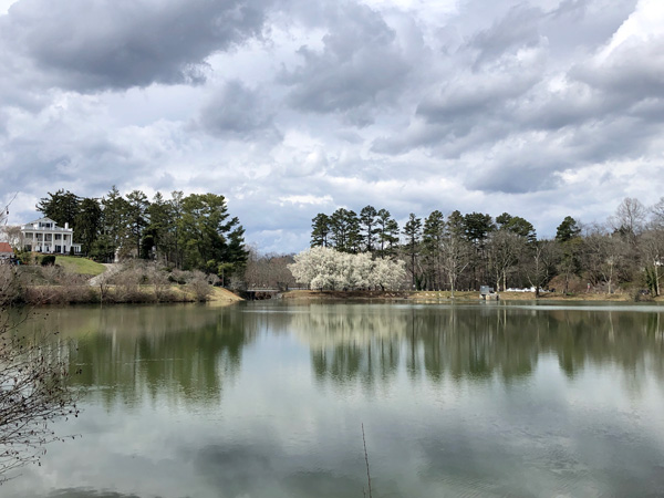 North Asheville Neighborhood around Beaver Lake with pond, walking trail, and houses