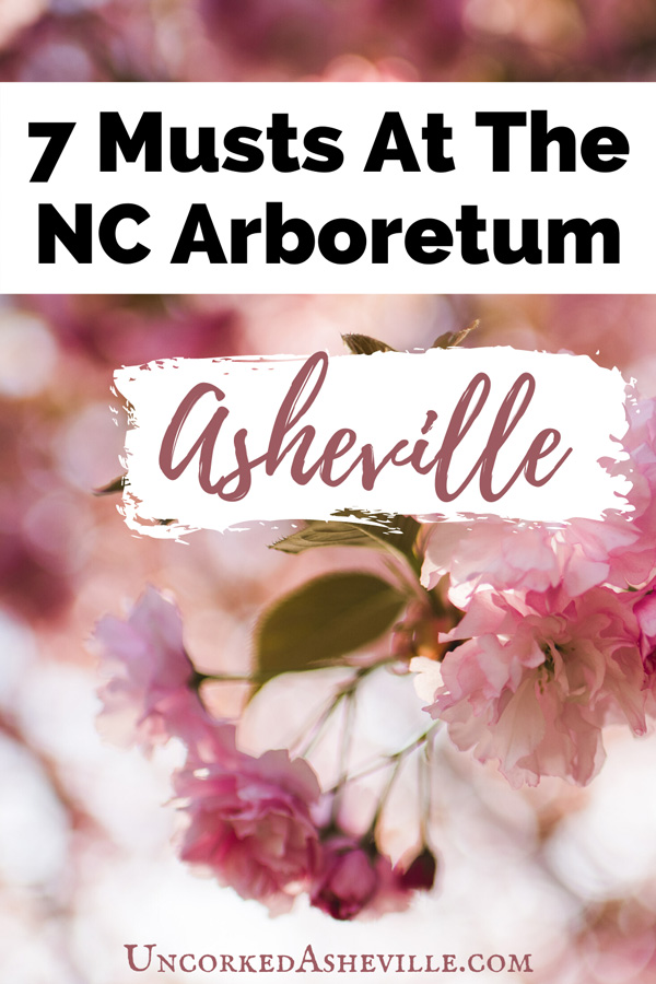 7 Things To Do NC Arboretum Asheville Pinterest pin with pink flowers