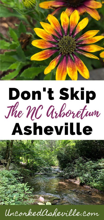 Don't Skip The NC Arboretum Asheville Pinterest pin with two pictures one with yellow, maroon, and orange flowers and the bottom with a bench on a trail next to a stream