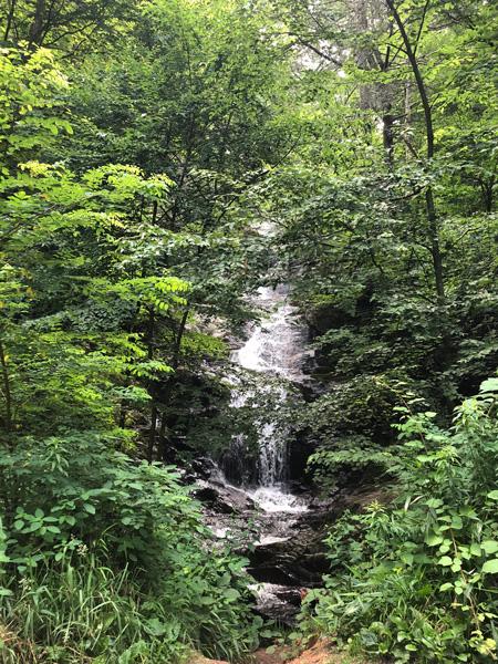 Roadside Waterfalls Near Asheville Walker Falls smaller waterfall cascading into brush
