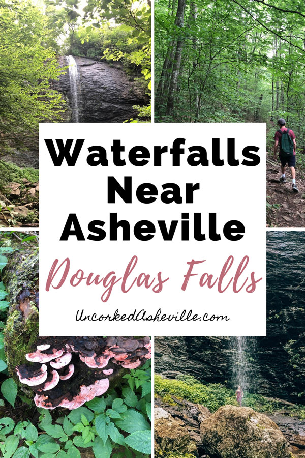 Waterfalls Near Asheville Douglas Falls pinterest pin with four images including pink tree mushrooms, Douglas Falls Trail and waterfall, man hiking down a trail, and woman behind Douglas Falls