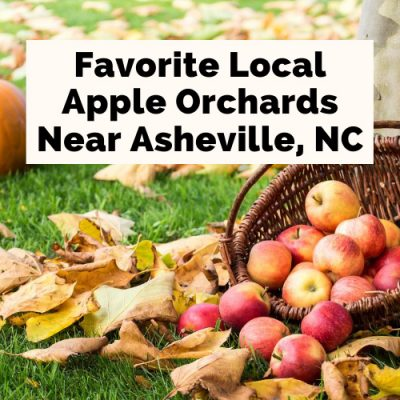 5 Delicious Apple Orchards In Hendersonville, NC