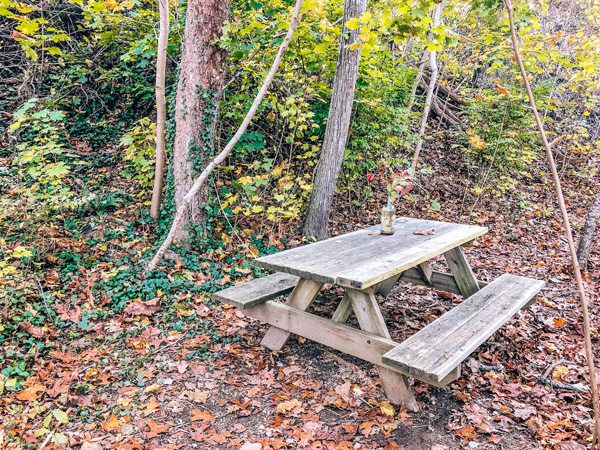 Beaver Lake Bird Sanctuary Asheville Picnic table with vase with red flowers