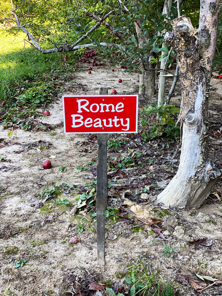 Coston Farm Hendersonville NC with red sign for Rome Beauty apples in apple orchards