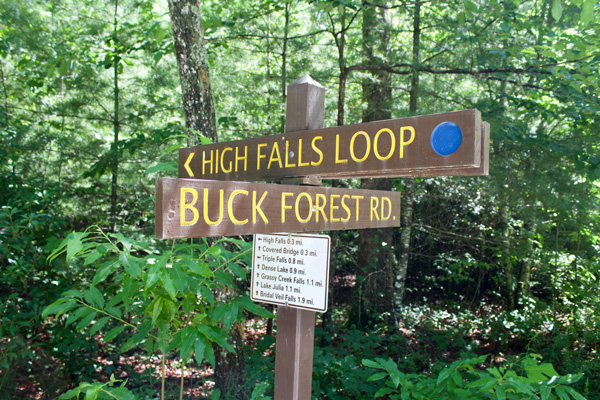 DuPont State Forest Trails and Hikes Signs saying High Falls Loop and Buck Forest Road