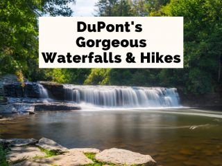 DuPont State Forest Waterfalls and hikes picture of Hooker falls blog post cover