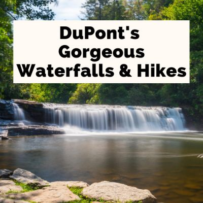 DuPont State Forest: Best Waterfalls & Hikes