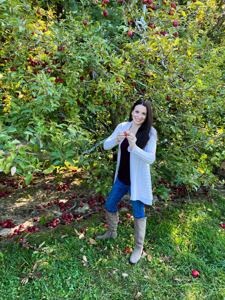 Hendersonville apple picking Coston Farm with white brunette woman in sweater and boots picking red Rome apples from apple tree