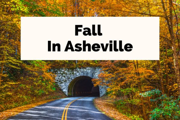 Asheville Fall and Fall In Asheville Blue Ridge Parkway tunnel with orange and golden leaves