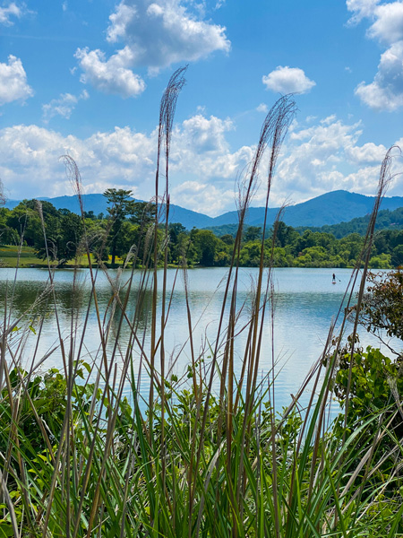 Beaver Lake Trail Asheville NC with Blue Ridge Mountains, shimmering blue lake, and paddle boarder on lake surrounded by tall grass