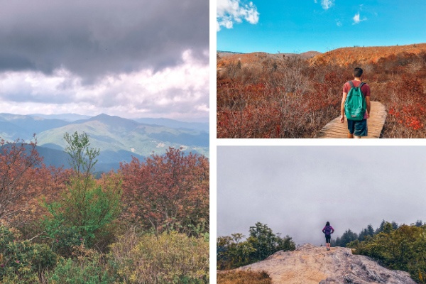 Blue Ridge Parkway Hikes Near Fryingpan Mountain Hike collage with three pictures of Mount Pisgah hike, Black Balsam Knob Hike, and Graveyard Fields Hike in the fall