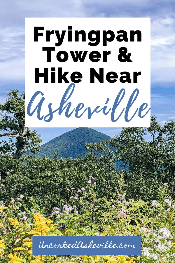 Fryingpan Mountain Lookout Tower and Trail Pinterest Pin with blue and green mountains and yellow wildflowers looking towards Mt Pisgah