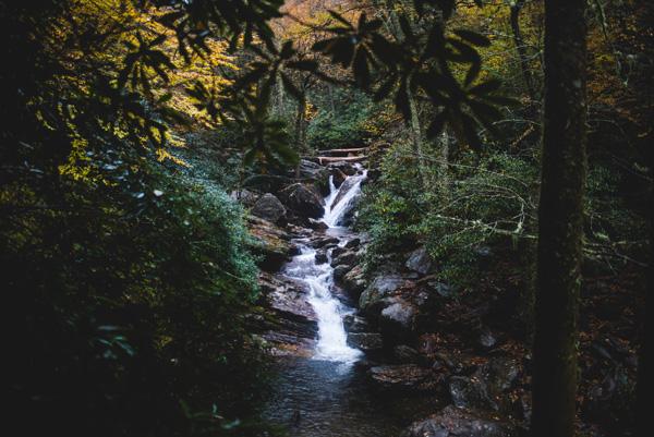 Skinny Dip Falls Trail North Carolina waterfall between trees and rocks