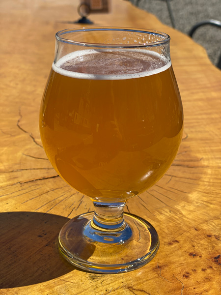 Bhramari Brewing Company glass of light brown beer