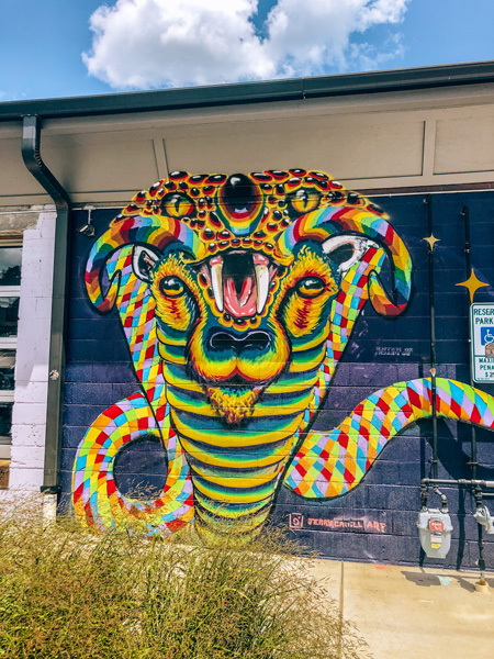River Arts District Murals Asheville NC rainbow snake with animal face inside it