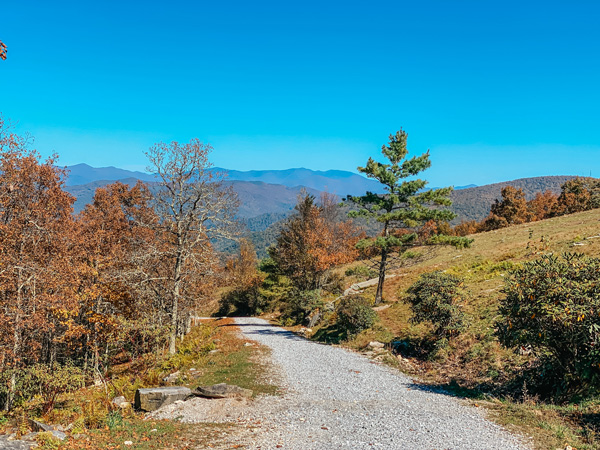 Bearwallow Mountain Trail Access Road with fall foliage