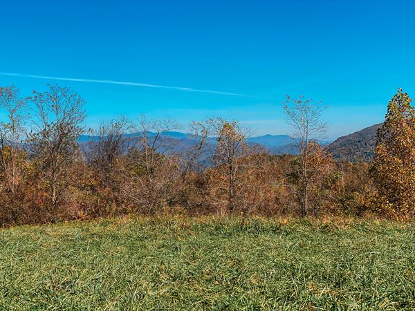 Trombatore Trail Hike North Carolina with mountain view