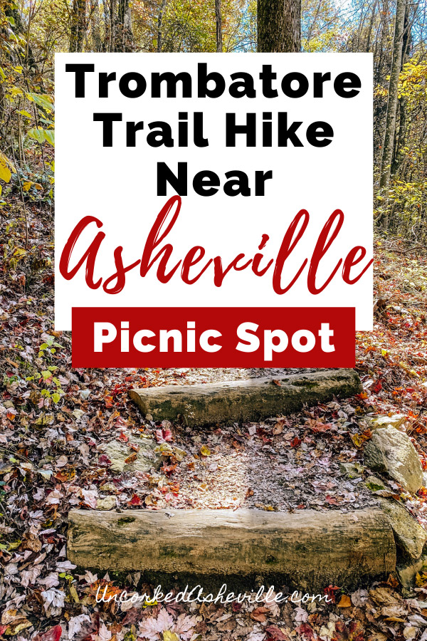 Trombatore Trail To Blue Ridge Pastures North Carolina Pinterest pin with log forest stairs