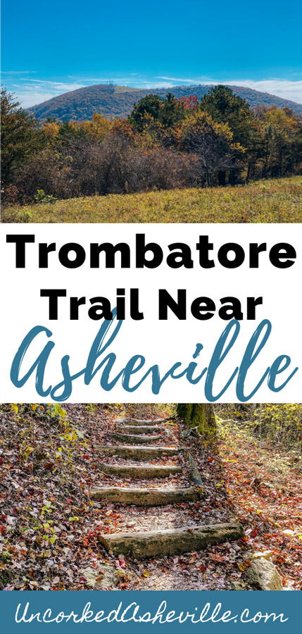 Trombatore Trail and Hike Near Asheville NC Pinterest pin with pictures of Blue Ridge Pastures and log forest stairs