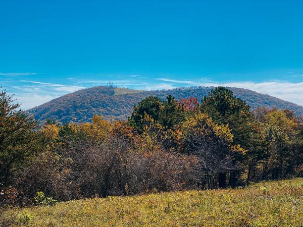 Trombatore Trail at Blue Ridge Pastures View of Mount Mitchell