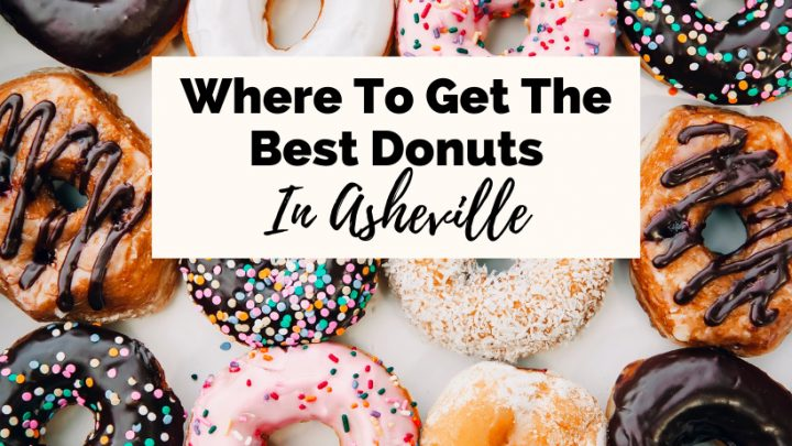Best donuts in Asheville NC with 12 donuts with chocolate, vanilla, and strawberry frosting and sprinkles