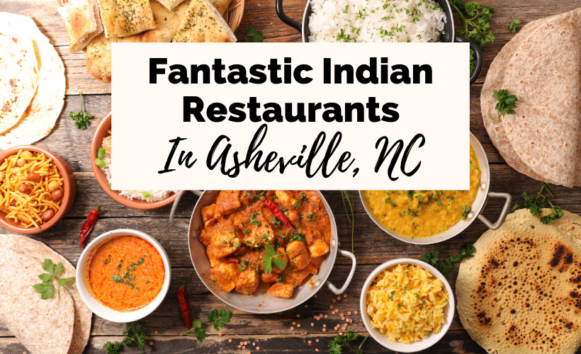 Indian Food Asheville Restaurants with picture of Indian curries, stews, meats, dal, tandoori, white rice