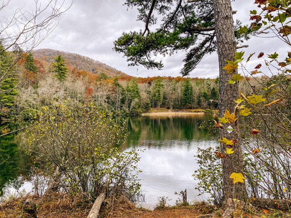 Asheville picnic spots Bent Creek Experimental Forest Lake Powhatan