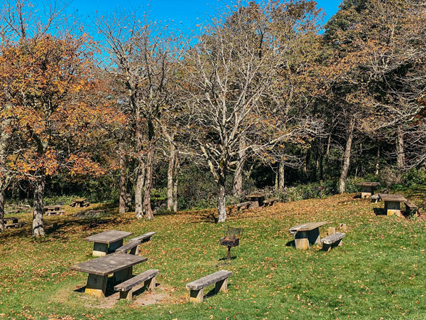 Craggy Gardens Picnic Area BRP with picnic tables on a hill