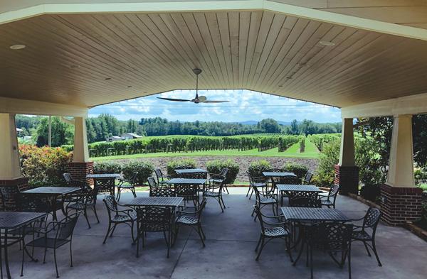 Hendersonville Winery Burntshirt Vineyards with tables overlooking vineyard