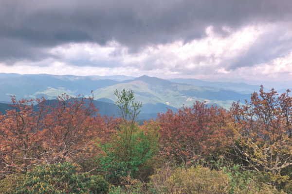 Mount Pisgah Blue Ridge Parkway with views from observation deck