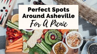 Perfect Picnic Areas In Asheville with picnic basket, vegetables on a charcuterie board like carrot sticks, celery, and tomato, and zig zag picnic blanket