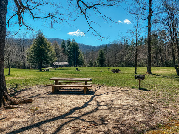 Pink Beds Picnic Area Pisgah Forest with picnic tables and trees