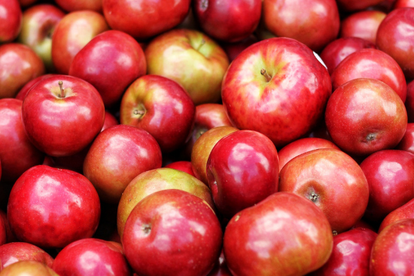 Things To Do Hendersonville NC Apple Picking with pile of shinny red apples