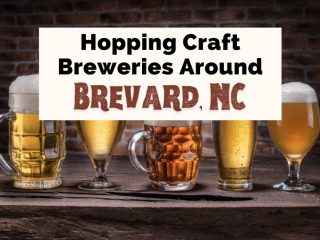 Best Breweries In Brevard NC with picture of different types of beer in different beer mugs