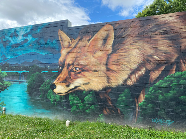 Fox Mural West Asheville with large fox looking over river with mountains