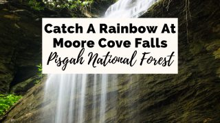 Moore Cove Falls Pisgah National Forest NC with picture of waterfall