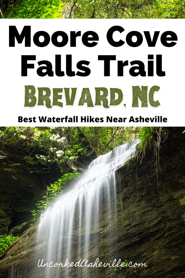Moore Cove Falls Trail and hike Pinterest pin with falls