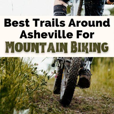 8 Scenic & Adventurous Asheville Mountain Biking Trails