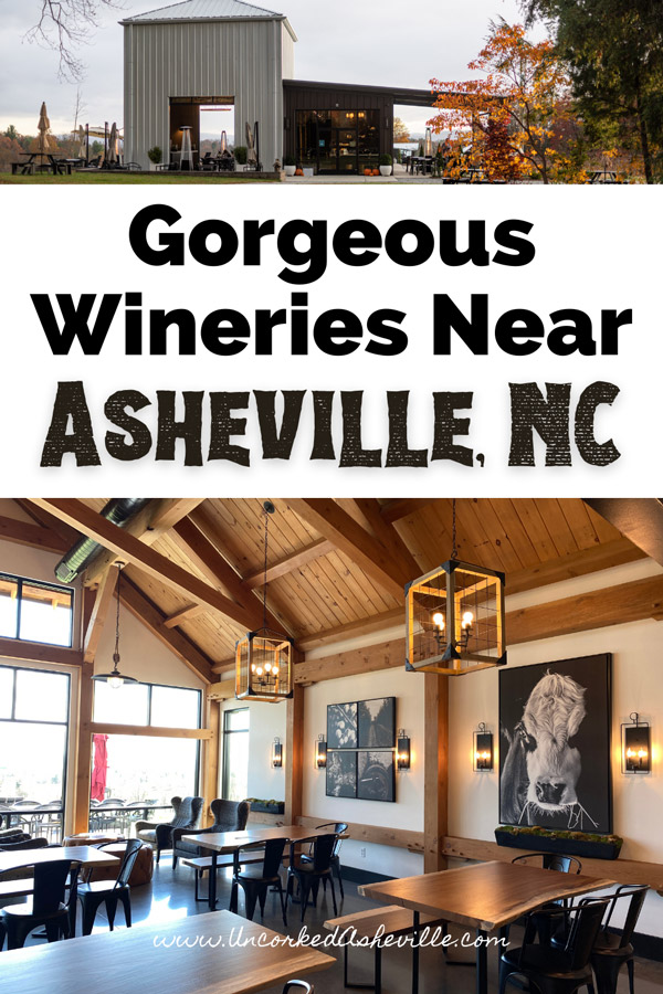 Best Wineries Near Asheville NC and Hendersonville Pinterest Pin with Marked Tree Vineyards and inside of Stone Ashe Vineyards