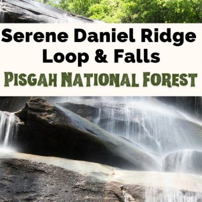 Serene Daniel Ridge Falls & Loop Trail: What You Need To Know