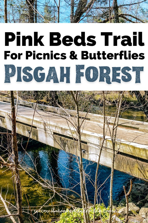 Pink Beds Trail Loop NC Pinterest Pin with wooden bridge over still water