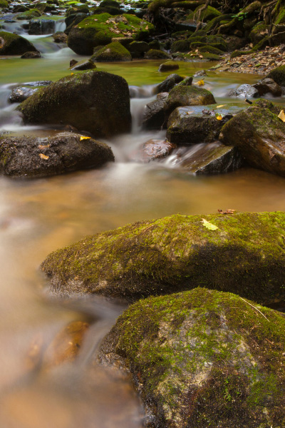 Pisgah National Forest North Carolina flowing stream with rocks