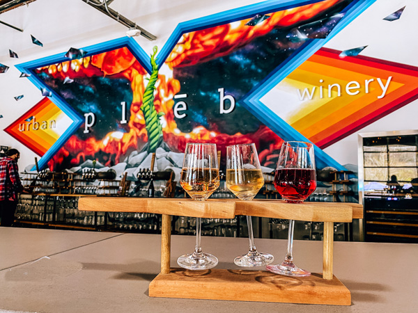 pleb urban winery Asheville NC with bright mural logo and wine flight with red, pink, and orange wine
