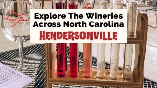 Hendersonville Wineries with Saint Paul Mountain Vineyards glass and wine testing with test tubes filled with white, red, and pink wine