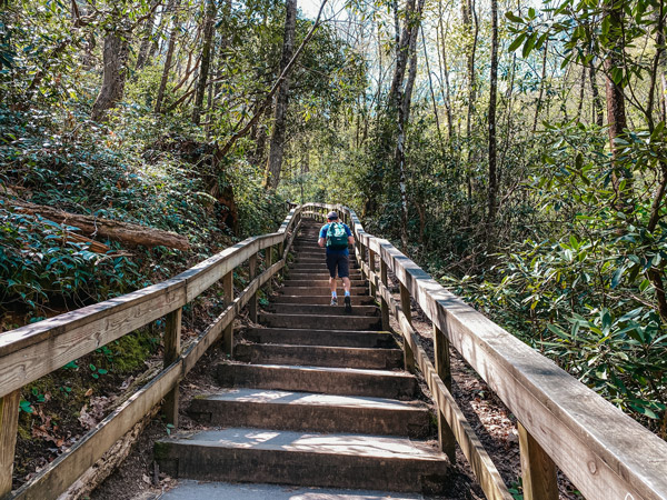 Mingo Falls Hike Stairs with white male wearing a green backpack climbing them
